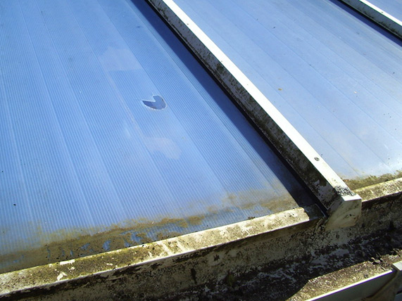 Perspex Roofing and Perspex Repairs