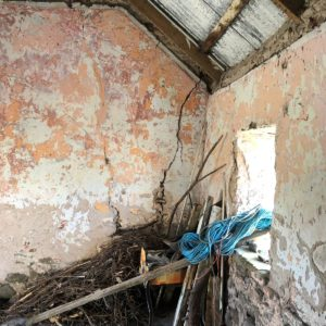 Bullard Tralee Restoration-20190903-WA0025
