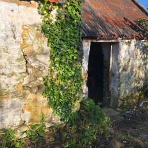 Bullard Tralee Restoration-20190903-WA0026