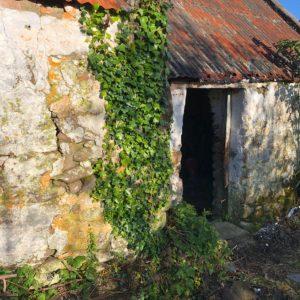 Bullard Tralee Restoration-20190903-WA0028